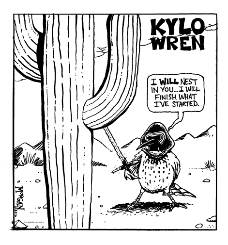 Kylo Wren